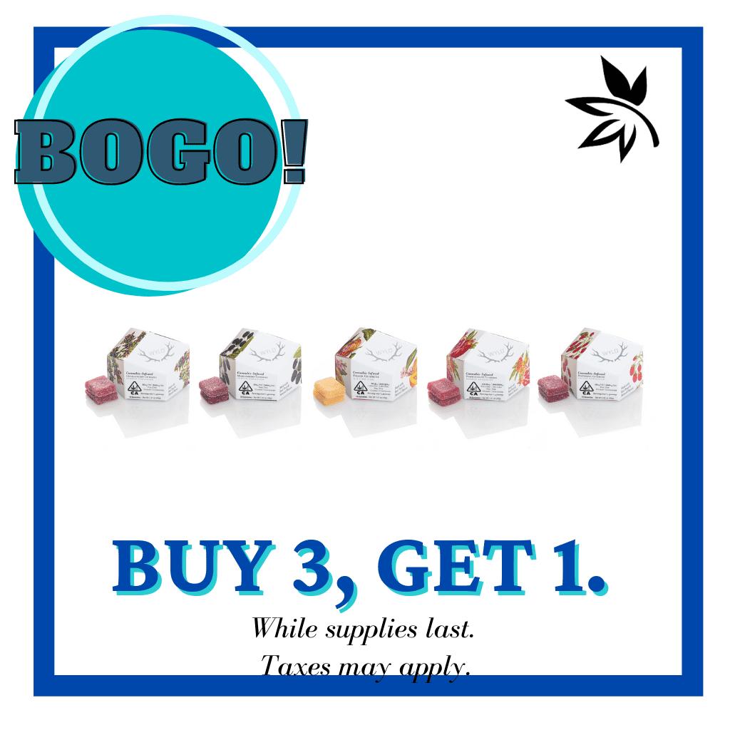 Soft-gel-Bogo